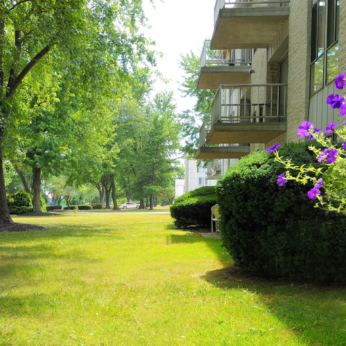 Country Wood Apartments: Cavalier Country Club Apartments